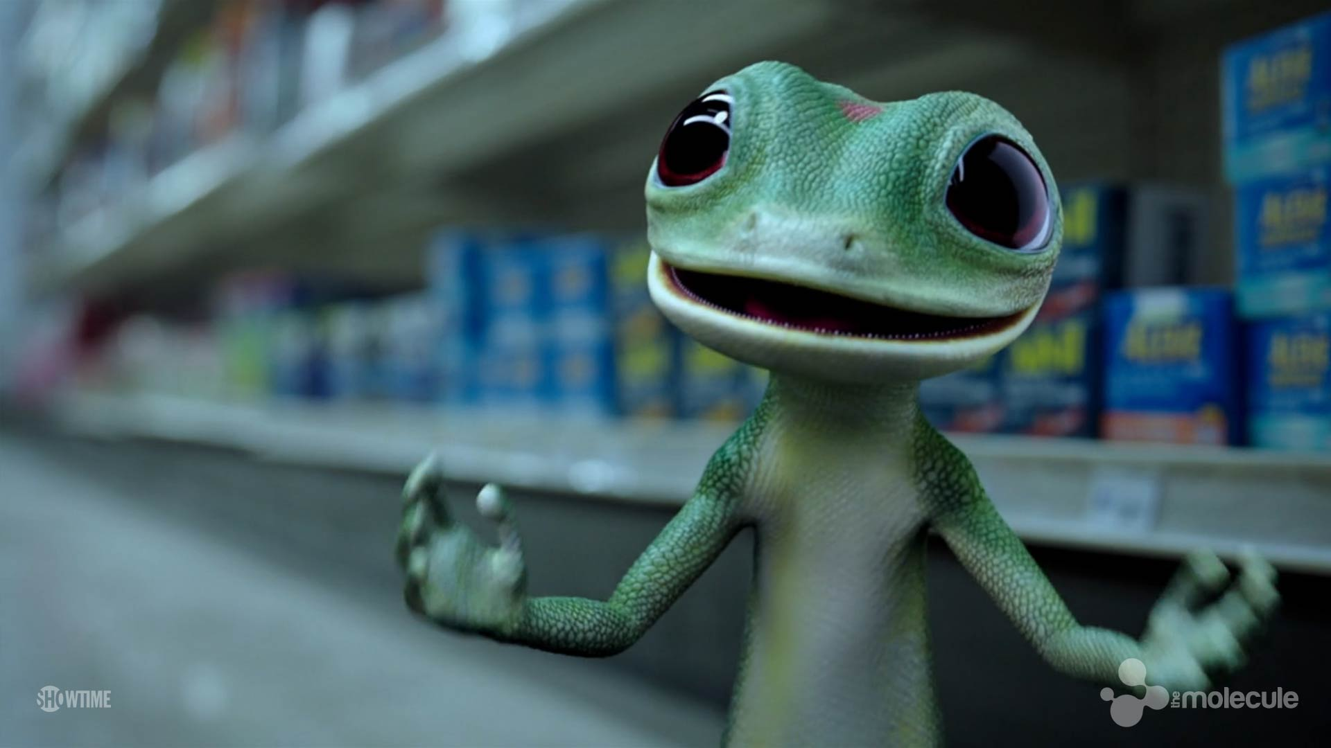 HY_GeckoStore
