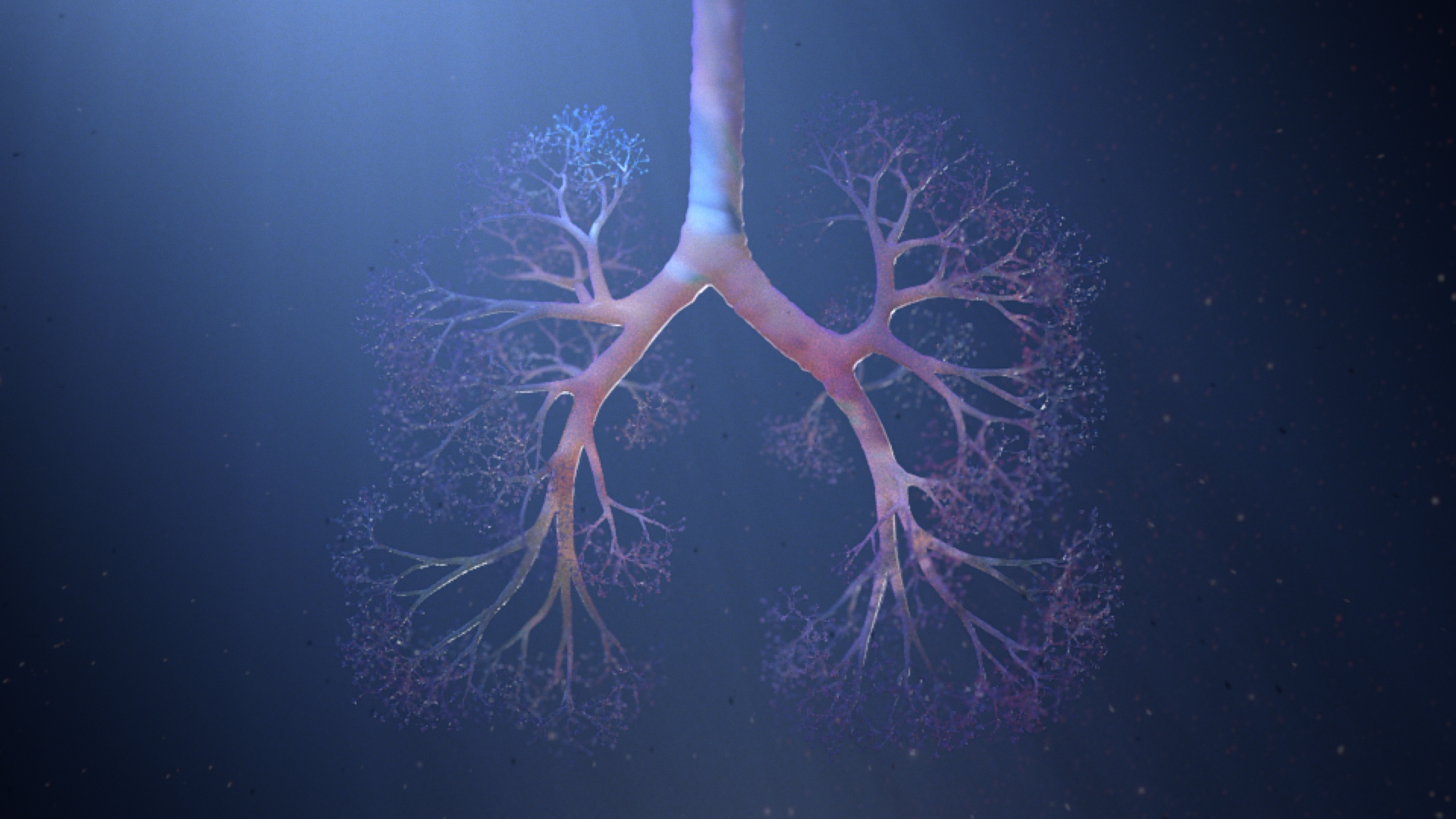 lung_v005_render_flesh-1